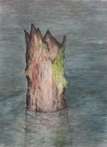 Vandspejl<BR>Kul,pigmentliner,aquarell på bomuldspapir<br>55*72 cm<br>2016<br>2150 kr